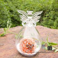 Wholesale Glass Angel Ornament weddings terrarium hanging glass vases