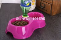 Wholesale New Red Purple Blue Yellow Lovely Little Dog Cat Pet Drink Food Diet Dual Bowl Automatic Water Dispenser Feeder