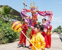 Wholesale 2016 children size silk print fabric CHINESE Kid DRAGON DANCE Folk Festival Celebration Costume dragon mascot costume colors bn8