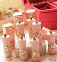 allied shipping - Makeup lipstick Little cat etudehouse ally princess matte lip gloss christmas limited lipstick high quanlity