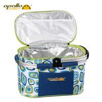 bag ice freezer - Brand APPOLLO WALKER Portable Outdoor Picnic Thermal Cooler Lunch Basket Car Freezer Cooler Bag Fridge Box Ice pack Insulation