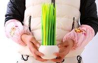 Wholesale Grass blade pen leaf gel pen creative cute novelty Korean stationery christmas gift promotion sales wwmy1688