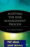 audit processes - Auditing the Risk Management Process