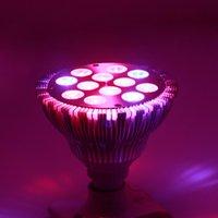 aquatic light bulbs - Led Grow light Bulb W Red Blue Grow Bulb for Garden Greenhouse and Hydroponic Aquatic E27 Socket Bands W