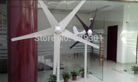 Wholesale 100W wind turbine W maximum wind turbine or wind blade black or white colors factory quality and price years warranty