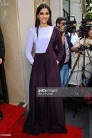 Cheap Design Fashion Purple High neck Long Sleeve Sonam Kapoor Red Carpet Celebrity Dresses Gorgeous Evening Prom Dress Party Gowns Exquisite Chic