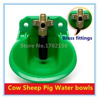 Cheap Free shipping Selling models Cow Sheep Pig Water bowls Animals drinking Tool Amniotic fluid Cup Farm Equipment Wholesale