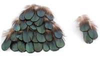 Wholesale NEW DIY craft Green copper chicken Verdigris Natural feathers PRO cleaning feathers diy jewelry bag necklace headband drops hipping