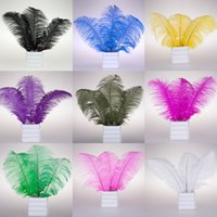 Wholesale Hot sell Pretty Natural OSTRICH FEATHERS inch Color Selection Wedding Hotels Decoration