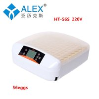 Wholesale New HT A arrival full automatic V mini egg incubator with one key egg test on sale