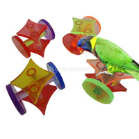 acrylic parrot toys - SUNTEK Acrylic Colorful Seesaw Pet Toy for Hamster Parrots