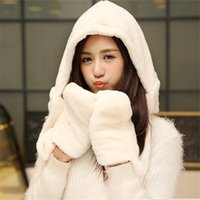 Wholesale Hat and Scarf Set For Women Winter Warm Women s Hoodie Gloves Pocket Earflap Long Shawl Snood Wraps High Quality Muts En Sjaal