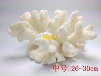 al por mayor compañía de terciopelo-Natural de coral blanco de terciopelo coral ornamentos decoración empresa Home Furnishing acuario acuario diseño de tiro