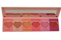 Wholesale ap5566 High Quality Love Flush Long Lasting hour Blush Wardrobe Palette SIX Shades Presell