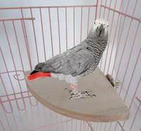 Wholesale Parrot bird squirrel hamster fan pedal springboard diving platform toys platform