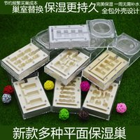 Wholesale Ant nest pet ant nest breeding and rearing of moisturizing gypsum aerated brick plane nest box series Does not contain the ants