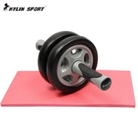 Wholesale Wonderful No Noise Double Wheeled Version Abdominal Wheel Ab Roller With Mat For Exercise Fitness Equipment
