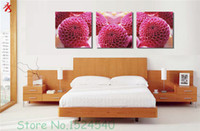 abstract flower photos - Cute Rose Red Flowers Unframed Hydrangea Art Photo Canvas Painting Home Sofa Wall pictures for living room pastoral simple Modular Picture
