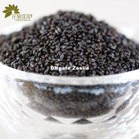 basil tea - Basil seeds g Organic Herbal Detox Slimming Weight Loss Colon Cleanse Kidney Cleanse Skinny Tea