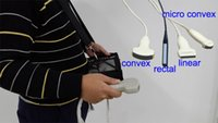 animal detection - Animal Ultrasound Scanning Offers A Mobile Pregnancy Detection Service EW B10V With Rectal Probe Waterproof Bag Extended Spare Battery