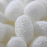 Wholesale Natural Silkworm Cocoons Ball Deep Pore Cleansing Oily Acne Skin Wash Face Brush Superfine Facial Cleansing Brush