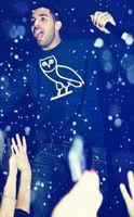 Wholesale Women Men Drake Owl OVOXO print Sweatshirt Hoodies Autumn Winter Hooded Pullovers Jogger Sport Coat Hip Hop sytle