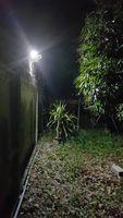 Wholesale IP67 Waterproof power w outdoor solar lights home decore Solar Garden Light