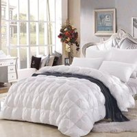 Wholesale Hulizhijia Down quilt Goose down quilt The quilt core Genuine Thickened warm Winter quilt cotton Home Hotel quilt BZ