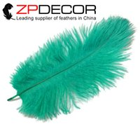 aqua christmas decorations - ZPDECOR Feather cm inch Hand Select Aqua Green Dye Ostrich Feather Plumes For Festival Decoration