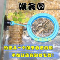 Wholesale Aquarium feeding ring feeding device feeding ring feeder fish aquarium feeding ring feeder foodstuff