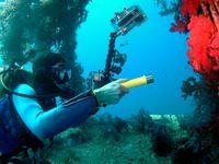best scuba torch - The best quality CREE Q5 scuba dive led torch Light Dive Flashlight m Diving Sport Lampe Torch Waterproof Yellow