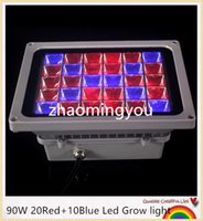 Wholesale 8PCS Led Floodlight W Red Blue Led Grow light for Flowering Plant and Hydroponics System Waterproof IP65 Outdoor lighting