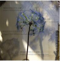 achat en gros de gros zakka-Gros haut Imitation Livraison artificielle Dandelion Décoration Fleur Zakka Photographie Props gratuit