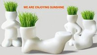Wholesale REAL Grass New Arrival series of real planting grass little vase Good for gift decoration