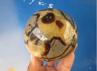 bamboo stone carving - Rare Septarian nodule Fossil Crystal Sphere Ball Natural crystal turtle stone ball bouquet diameter approx mm