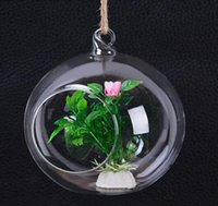 Wholesale Hanging Air Plant Terrarium Moss Succulent Planter Wedding Candles Glass Ball Tealight Holders Wedding Candlestick or Home Decor