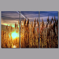 arts field - 3pcs set landscape decoration sun wall art pictures sunrise mountains gold Wheat field Canvas Painting for living room unframed
