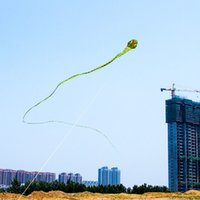 big huge snakes - 3D meters Stunt huge SNAKE POWER Sport Kite outdoor toy