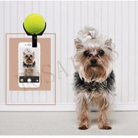 Wholesale Pet Photo focus ball holder clip on cellphone dog cat selfie helper eyes on the camera tennis ball holder on mobile phone clip