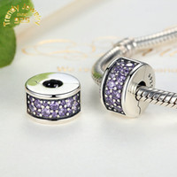 Wholesale 925 Sterling Silver Shining Elegance Clip Beads Charm with Honeysuckle Fancy Color CZ For European Jewelry Making
