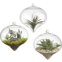 Wholesale Clear Glass Hanging Terrarium Air Plant Glass Vase For Home Outdoor Decoration Free Hanging String Packs of