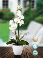Wholesale Led light AA batteries operated orchid flower arragement for home decoration party supplies xmas decoration festival gift