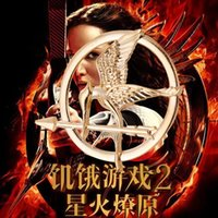 Wholesale The Hunger Games Brooches Inspired Mockingjay And Arrow Hot Movie Hunger Games Bird Brooch Pins For Women And Men DHL