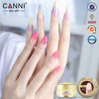 Wholesale Thick builder gel nails pink CANNI ml finger nail extension uv gel nail cover pink camouflage uv gel