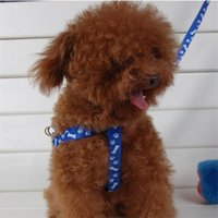 big cat pet supply - Nylon Large Big Small Pet Dog Puppy Cat Animals Supplies Accessories Products Leash Harness Necklace Rope Tie Collar Lead