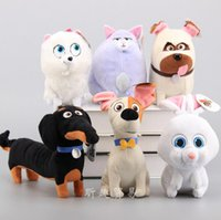 Wholesale cm PET film trade secrets doll plush toy doll Pet big secret
