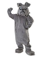 adult bulldog costume - Cool Bulldog Mascot costume Gray School Animal Team Cheerleading Complete Outfit Adult Size