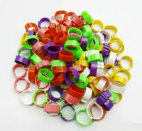 Wholesale Poultry Leg Bands Bird Chicks Ducks Clip on Rings Colors