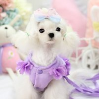 basic fairy - Fairy ultra us pet chest and back chest dog Teddy Yorkshire traction traction rope back suit specials
