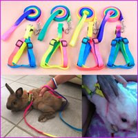 Wholesale Colorful Pet Small Dog Puppy Cat Rabbit Kitten Nylon Harness Collar Leash Lead Rope Adjustable Size